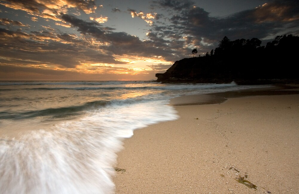 Turimetta Beach Sunrise, Narabeen by Daniel  Speranza