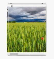 Evening storm over the medieval village iPad Case/Skin