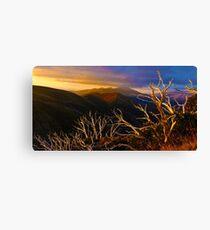 0389 Mt Hotham Brush Canvas Print