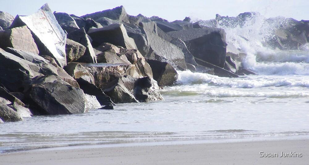 Low Tide by Susan Junkins