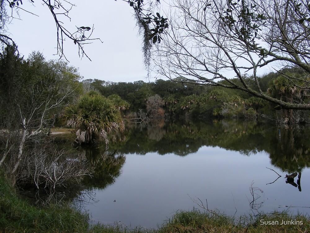 Serenity Lake by Susan Junkins