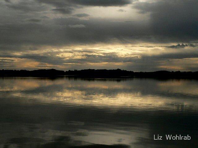 Stillness  by Liz  Wohlrab