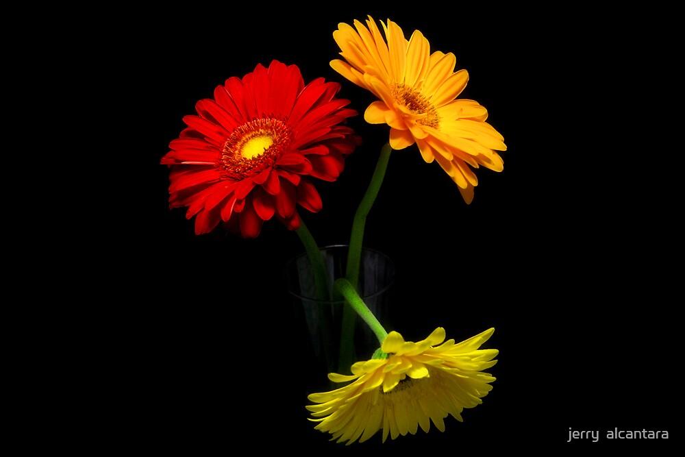 Red Orange Yellow by jerry  alcantara