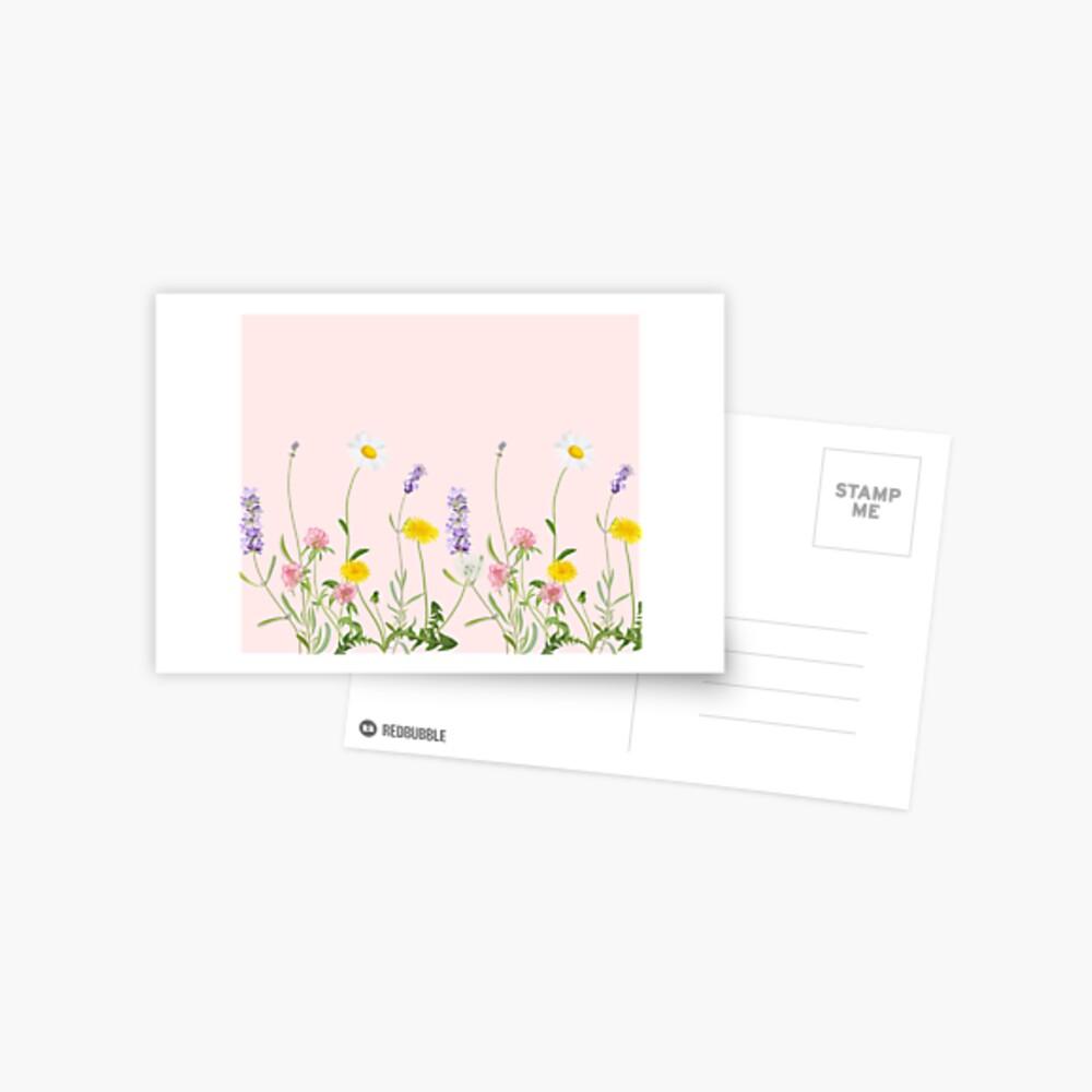 Blush Pink - Wildblumenträume Postkarte