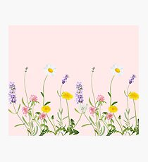 Blush pink - wildflower dreams Photographic Print