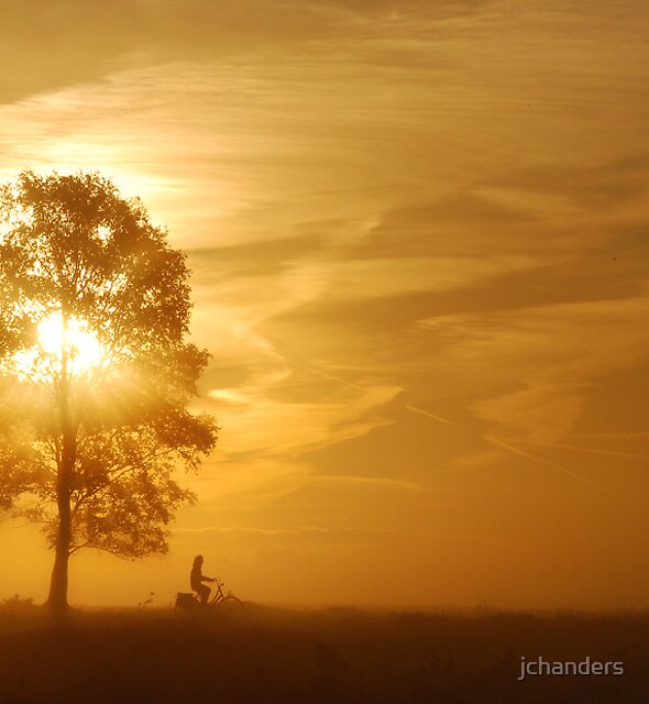 Cycling on the morning heath by jchanders