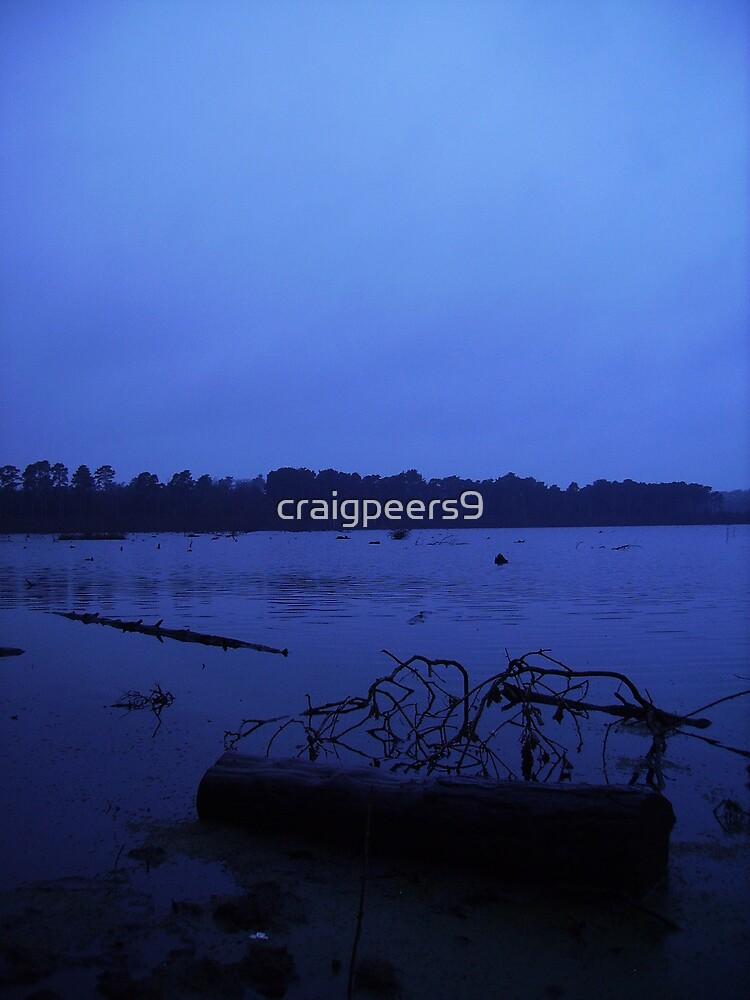 Dead Wood by craigpeers9