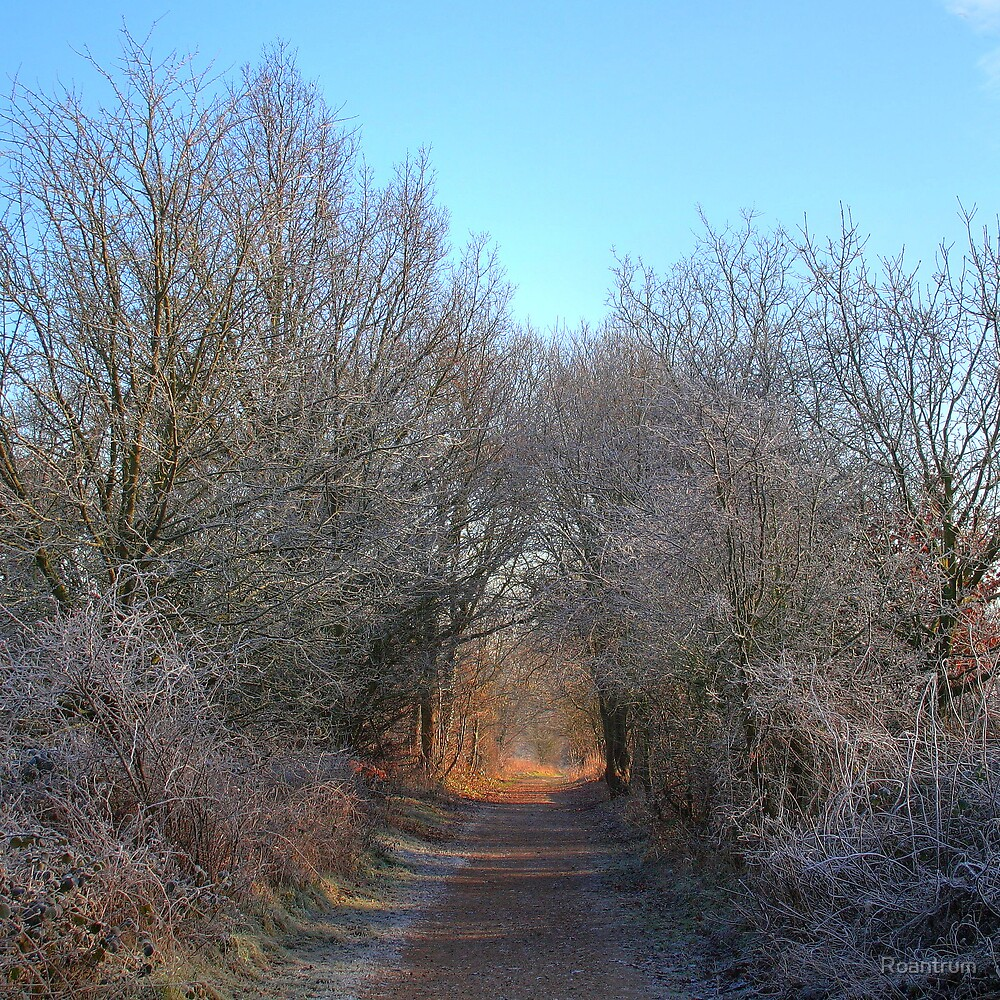 The Lea Valley Way in Frost by Roantrum