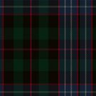 Williamson/Smart Tartan  by Detnecs2013