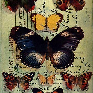 Postcard Butterflies by tillymagoo