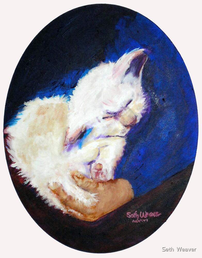 Lap Cat by Seth  Weaver