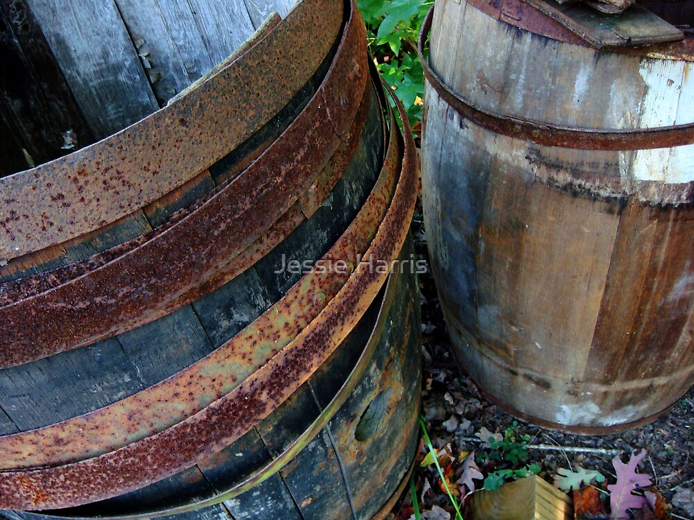 Barrels by Jessie Harris