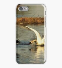 Waterfowl Nesting Battle. iPhone Case/Skin