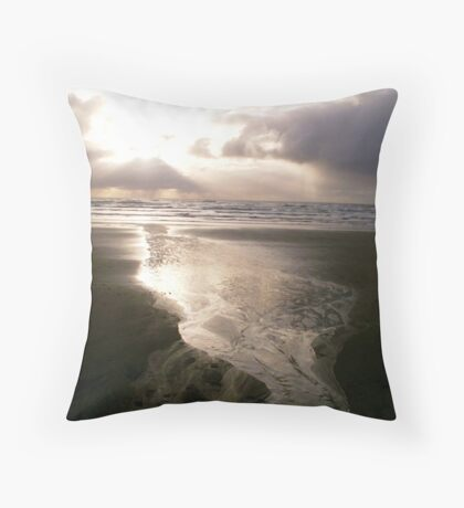 End of the road for rain drops Throw Pillow