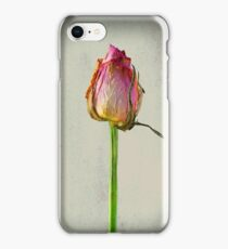 Old Rose on Paper iPhone Case/Skin