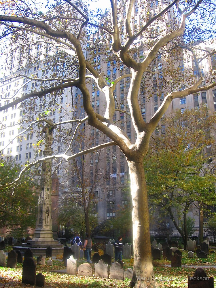 Tree in New York Cemetery by Mary Kaderabek-Aleckson
