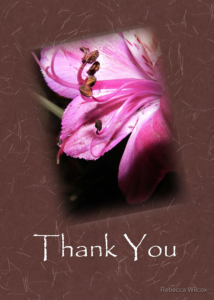 Thanks by Rebecca Wilcox