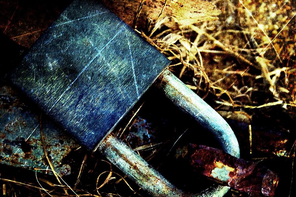 Lock by Belinda Fraser