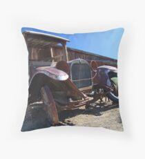 Sagebrush and Rust Throw Pillow