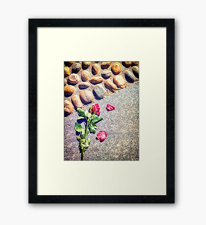 End of a love Framed Print