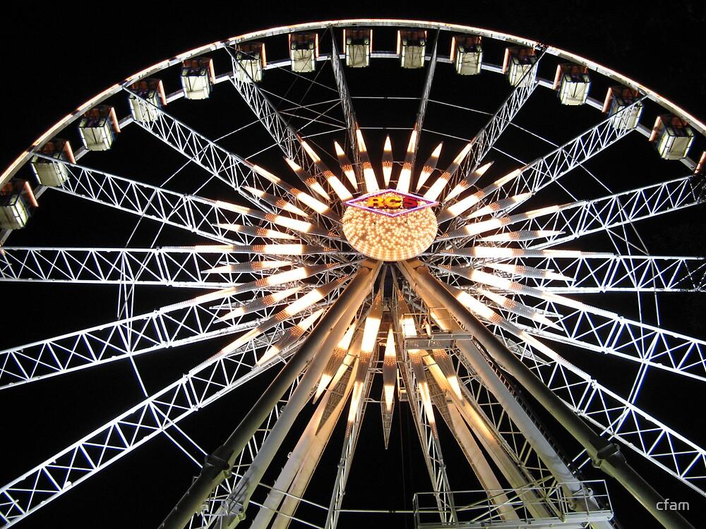 The Ferris Wheel by cfam