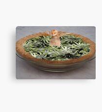 Chicken pot pie Canvas Print