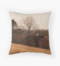A Glance in The Field Throw Pillow