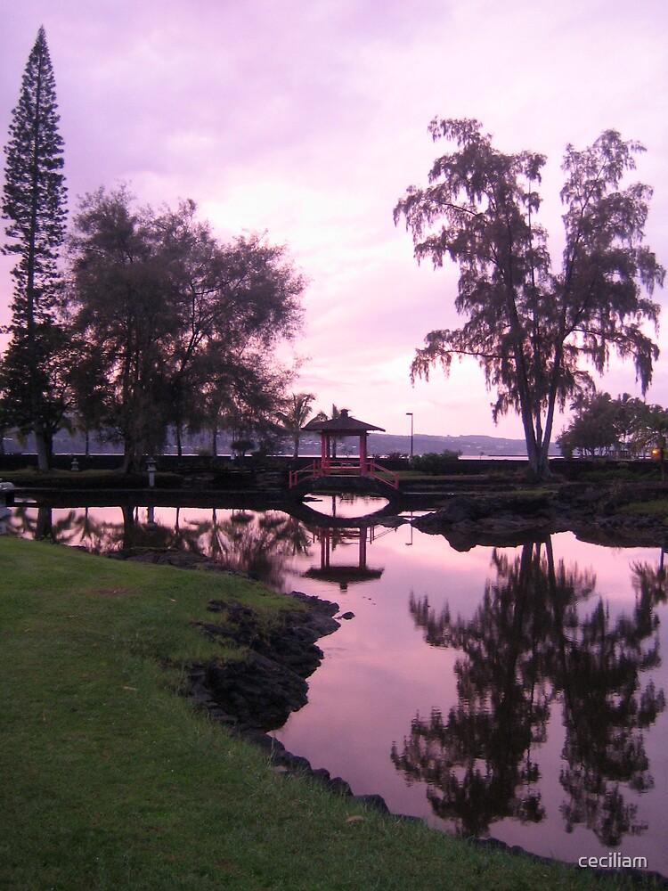 hilo, hawaii by ceciliam