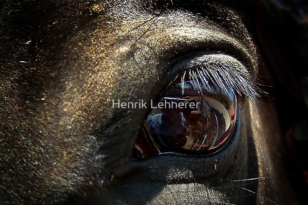 Me In An Eye by Henrik Lehnerer