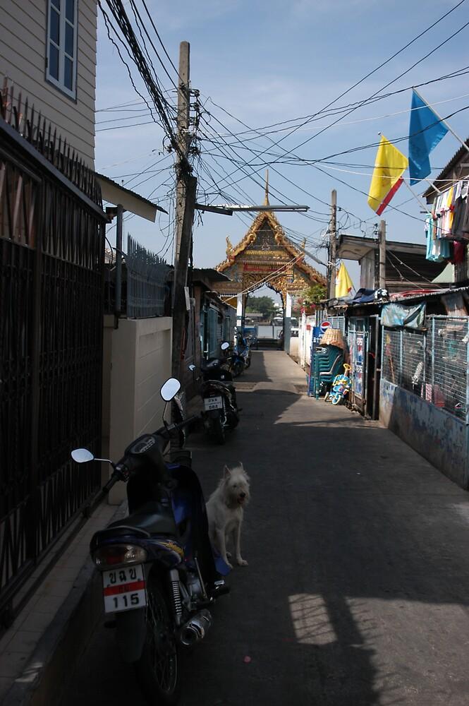 riverside shrine in bangkok by Dan Paulson