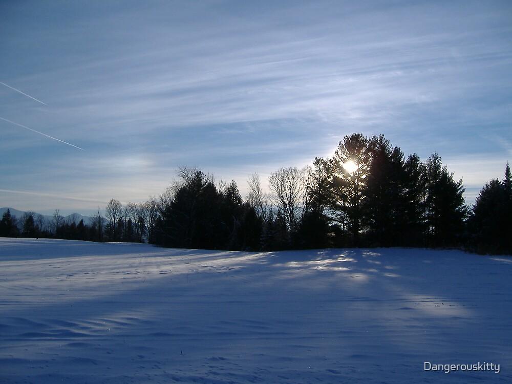 Snowy Sunset by Dangerouskitty