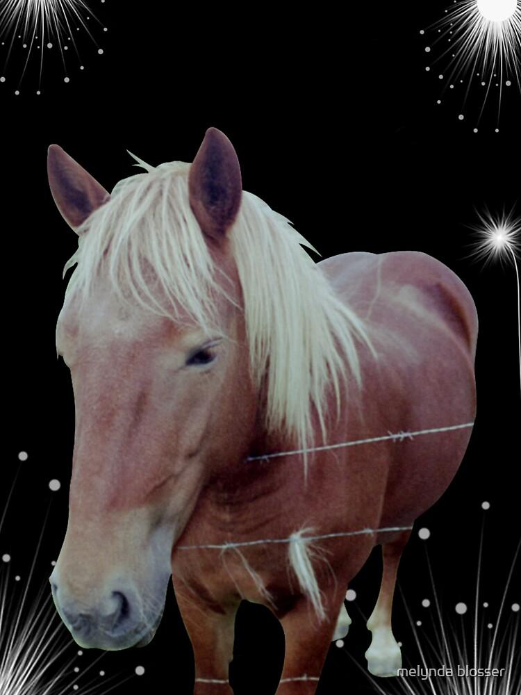 belgium horse by mlgkats