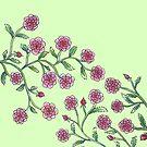 Stylised Climbing Roses on Light Green Background by CarolineLembke