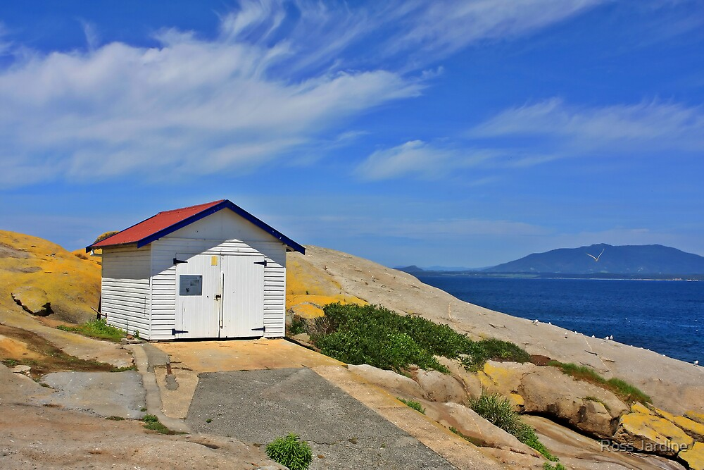 Montague Island Boat House by Ross Jardine