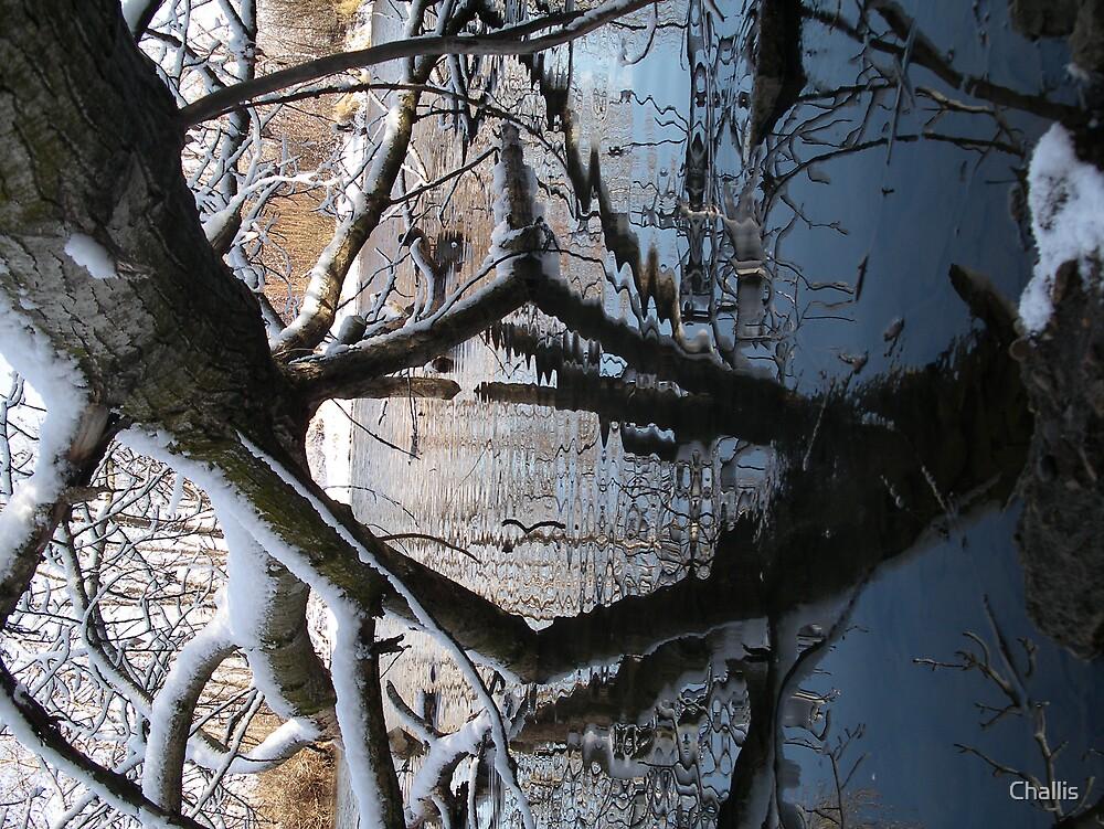 Rorschach by Challis