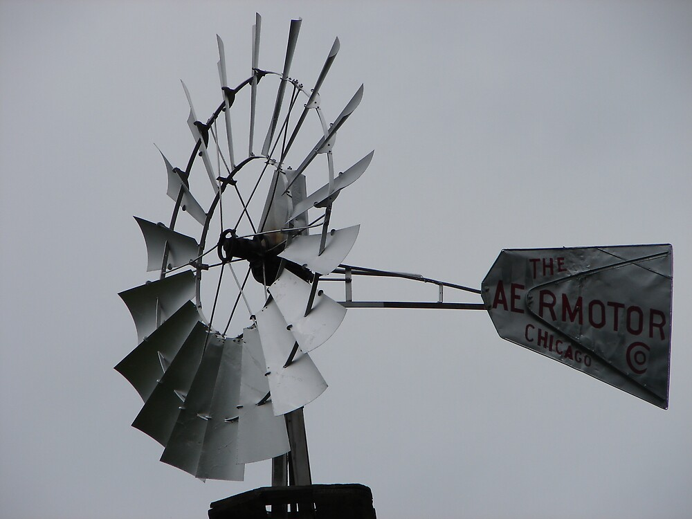 Weather Vane by inventor