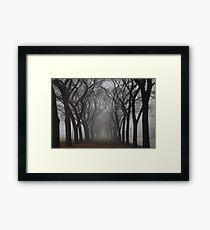 Columns of Trees in the Fog Framed Print