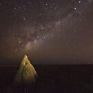 dampier creek termite mount milky way  by Elliot62