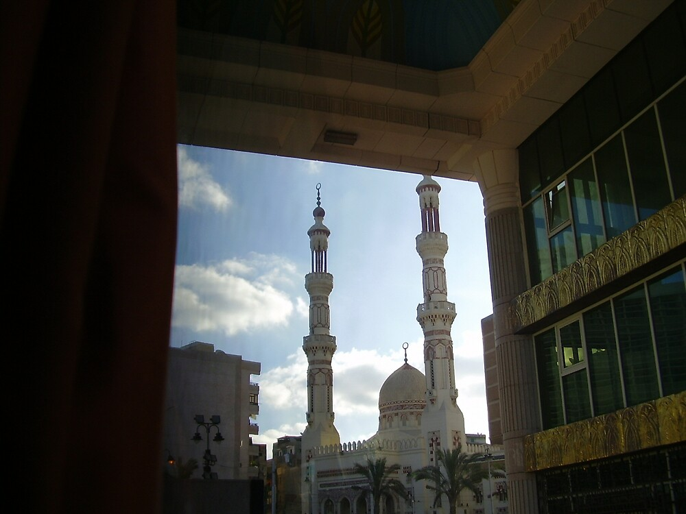 Mosques in Egypt by Ann Palmieri
