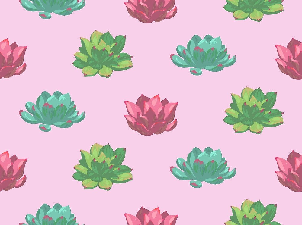 Collection of succulents by kostochka
