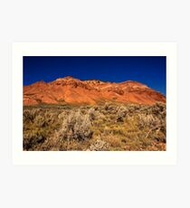 Near Red Rock campground Art Print