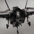 The working end of the F-35 by carlyhodges