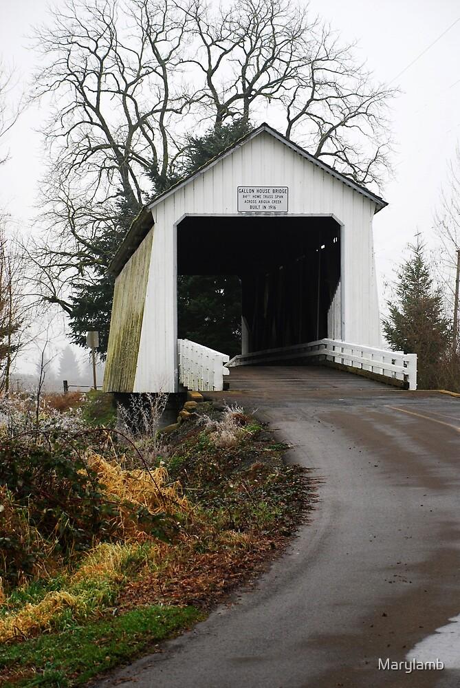 Gallon House Bridge by Marylamb