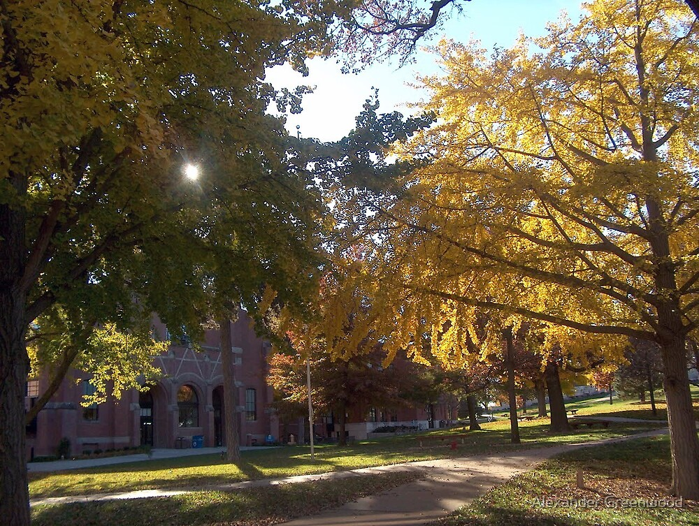 The Quad in Fall, Peru State College by Alex Greenwood