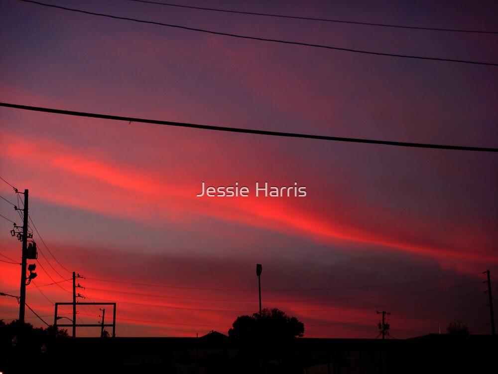 Sky Streaks by Jessie Harris