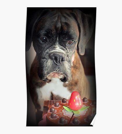 Seufz ... Wunsch war echt .... Boxer Dogs Series Poster