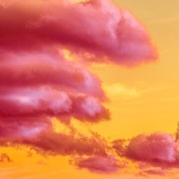 Pink Sunset by Chari-ot
