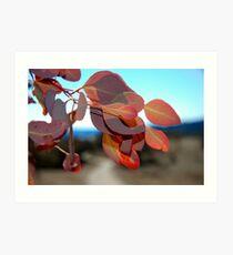 Blowing Leaves Art Print