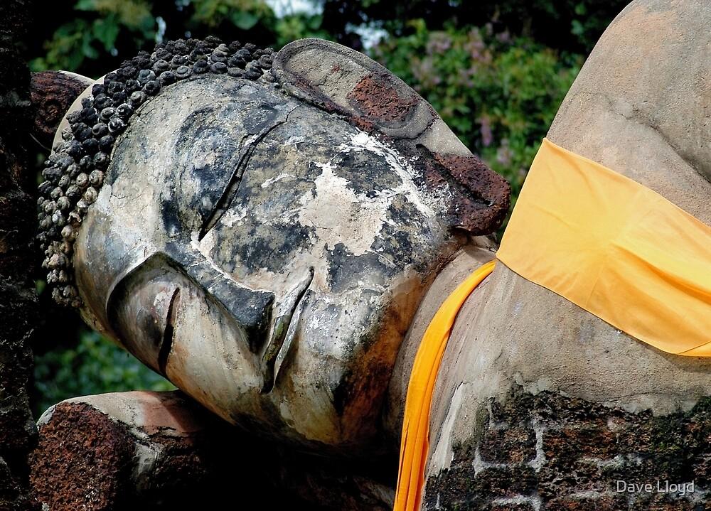 Reclining Buddha by Dave Lloyd