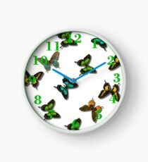 Coloured butterflies  Clock